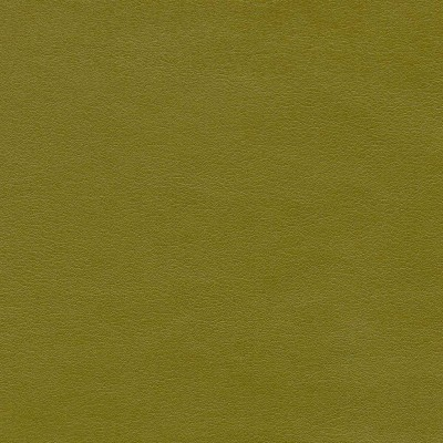 Sevilla Seagrass