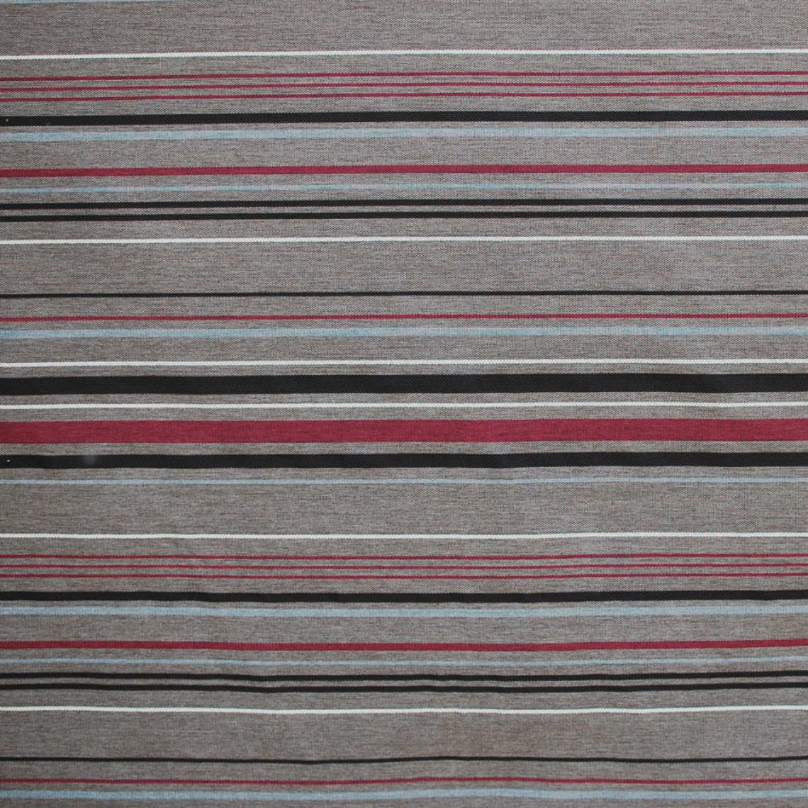 Stripe Brown-berry