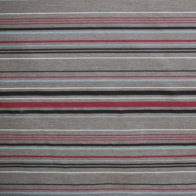 Stripe Brown-berry