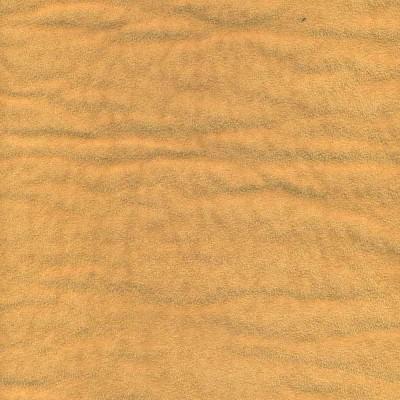 Dandera 290